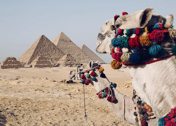 egypte c6bo voyage blog plongée 3
