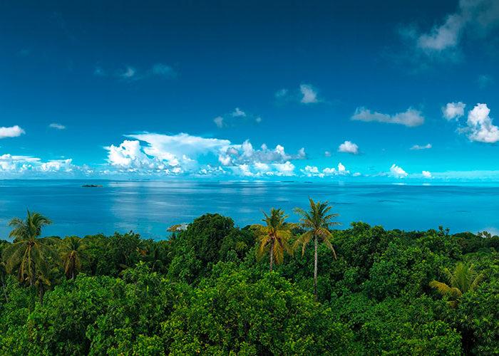 5 raisons d'aller plonger Micronésie C6Bo Voyage blog plongée