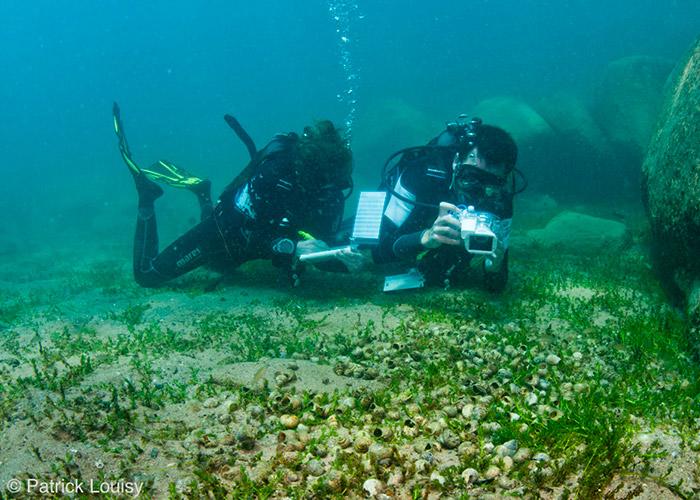 Plongeurs scientifiques - C6Bo Voyage blog plongée