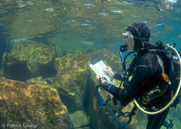Plongeuse scientifique - C6Bo Voyage blog plongée