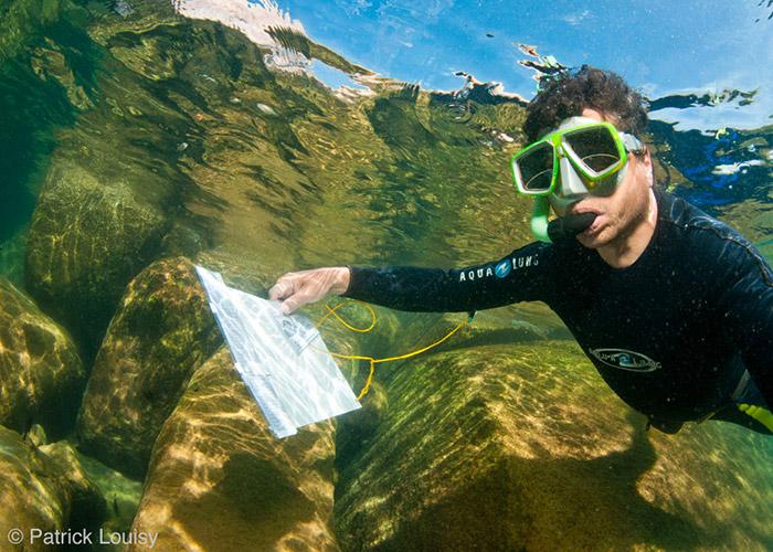 Snorkeleur Patrick Louisy - C6Bo Voyage blog plongée