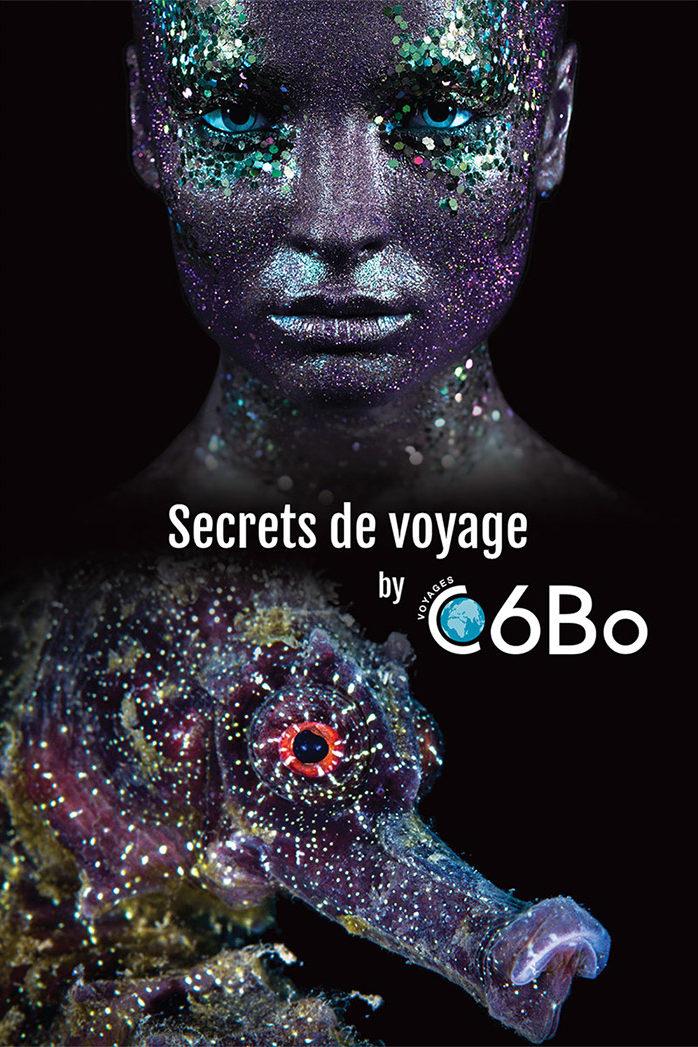 C6Bo Voyages plongée - visuels 2019 - Hippocampe